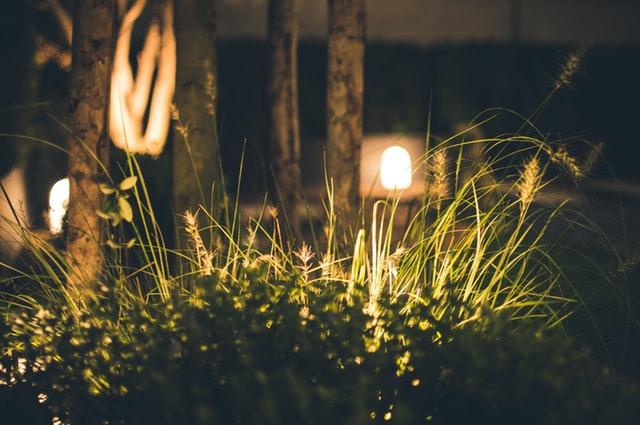 Laat je tuin leven, ook na zonsondergang!